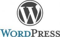 Wordpress Website opzetten, verhuizen of omzetten